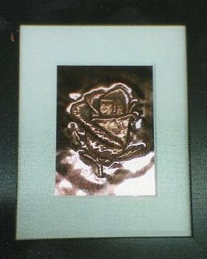 1-copper-rose